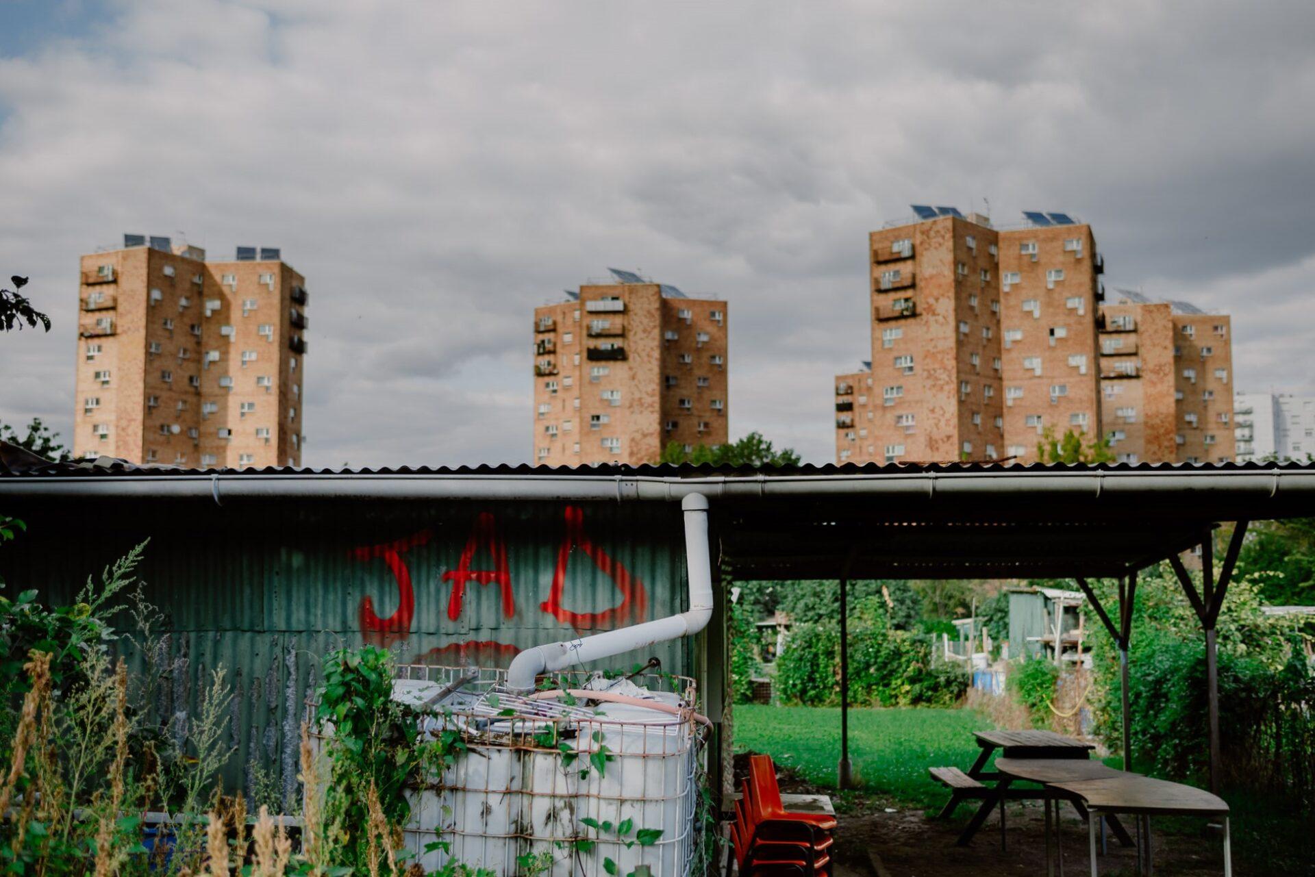 Jardins ouvriers aubervilliers 13 - Dagmara Bojenko - Eco-conscious Weddings, Births & Families
