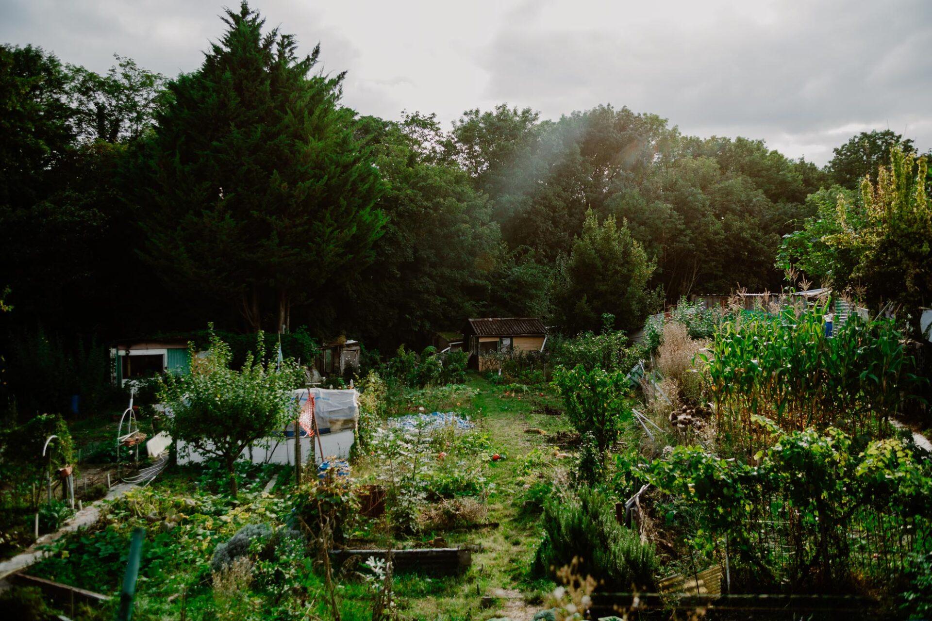 Jardins ouvriers aubervilliers 15 - Dagmara Bojenko - Eco-conscious Weddings, Births & Families