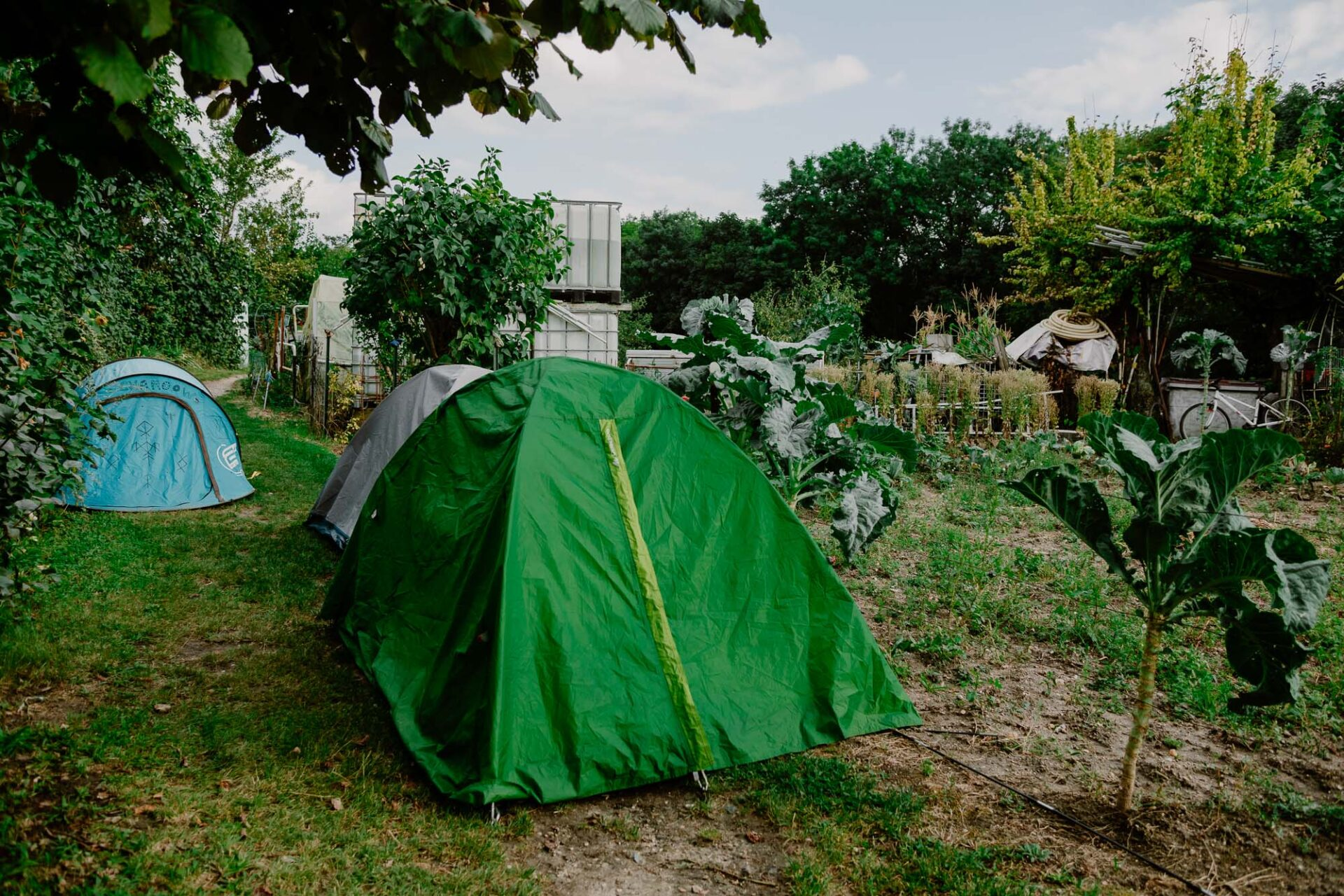 Jardins ouvriers aubervilliers 23 - Dagmara Bojenko - Eco-conscious Weddings, Births & Families
