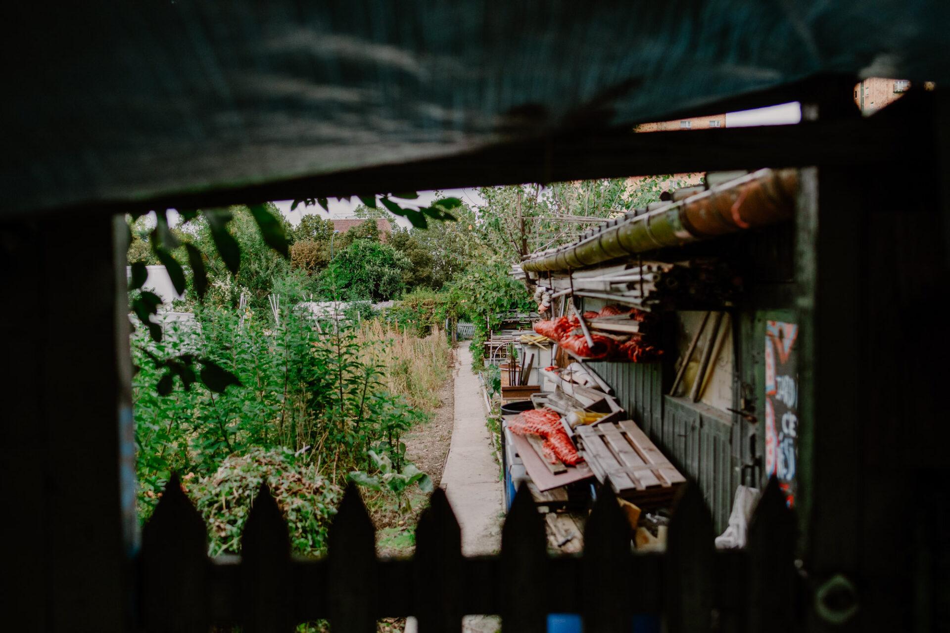 Jardins ouvriers aubervilliers 28 - Dagmara Bojenko - Eco-conscious Weddings, Births & Families