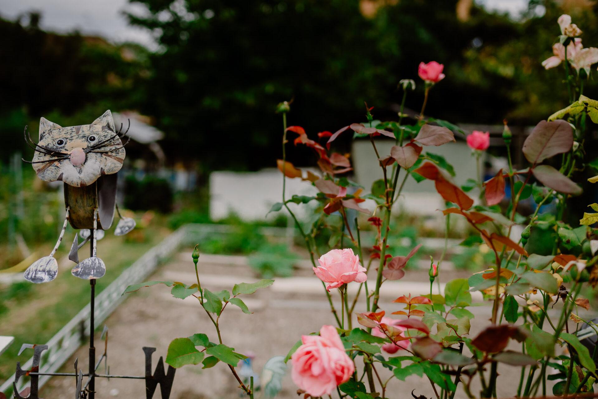 Jardins ouvriers aubervilliers 36 - Dagmara Bojenko - Eco-conscious Weddings, Births & Families