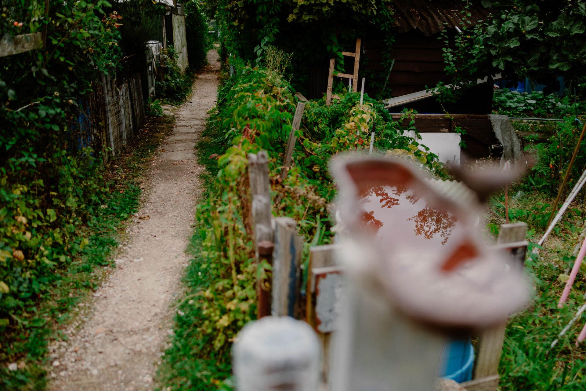 Jardins ouvriers aubervilliers 37 - Dagmara Bojenko - Eco-conscious Weddings, Births & Families
