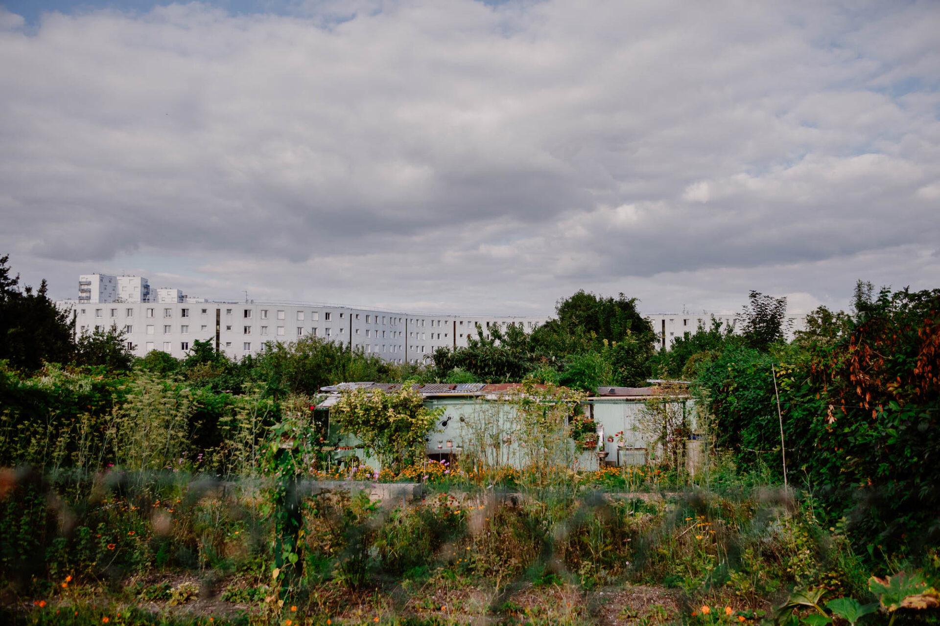 Jardins ouvriers aubervilliers 5 - Dagmara Bojenko - Eco-conscious Weddings, Births & Families
