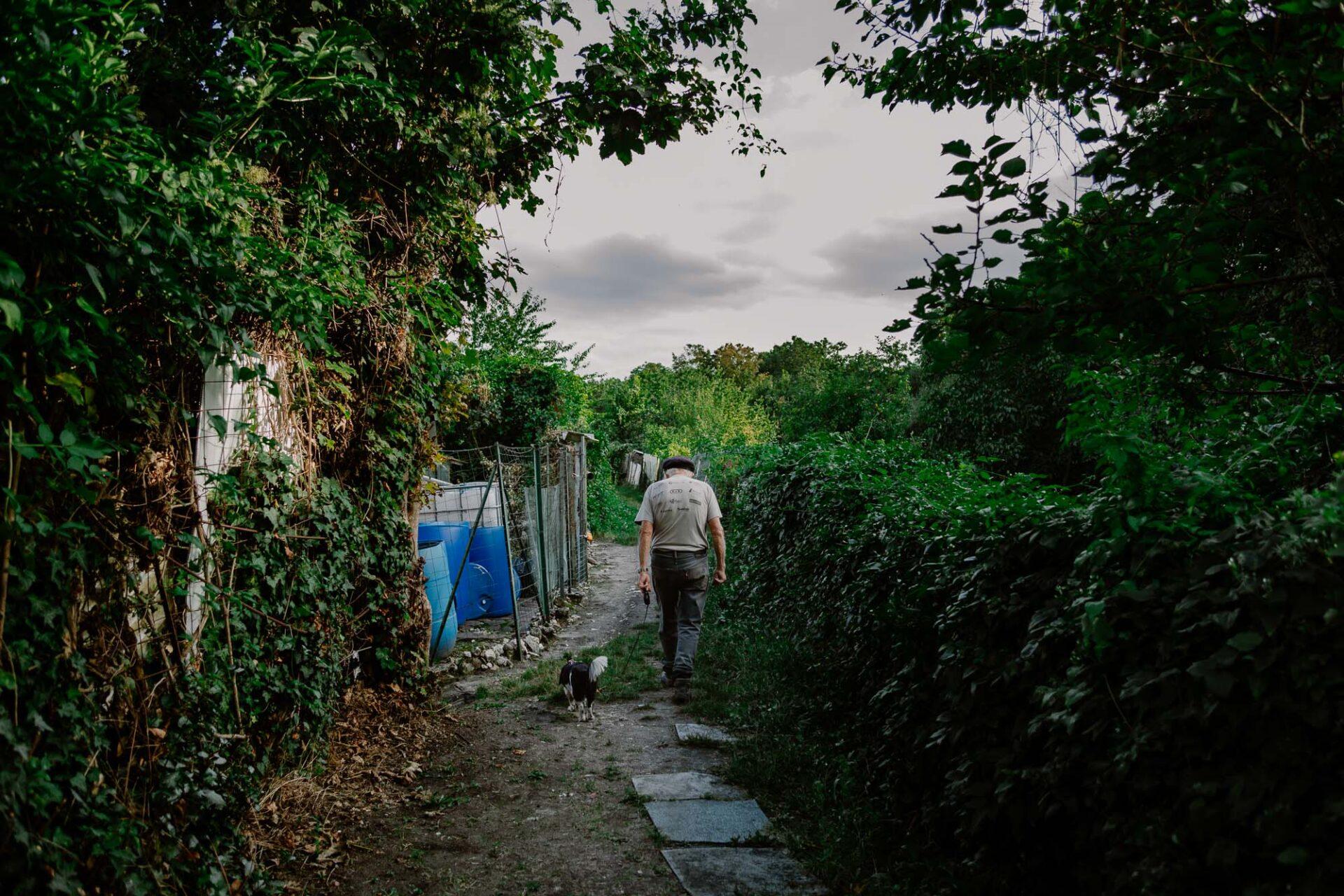 Jardins ouvriers aubervilliers 6 - Dagmara Bojenko - Eco-conscious Weddings, Births & Families