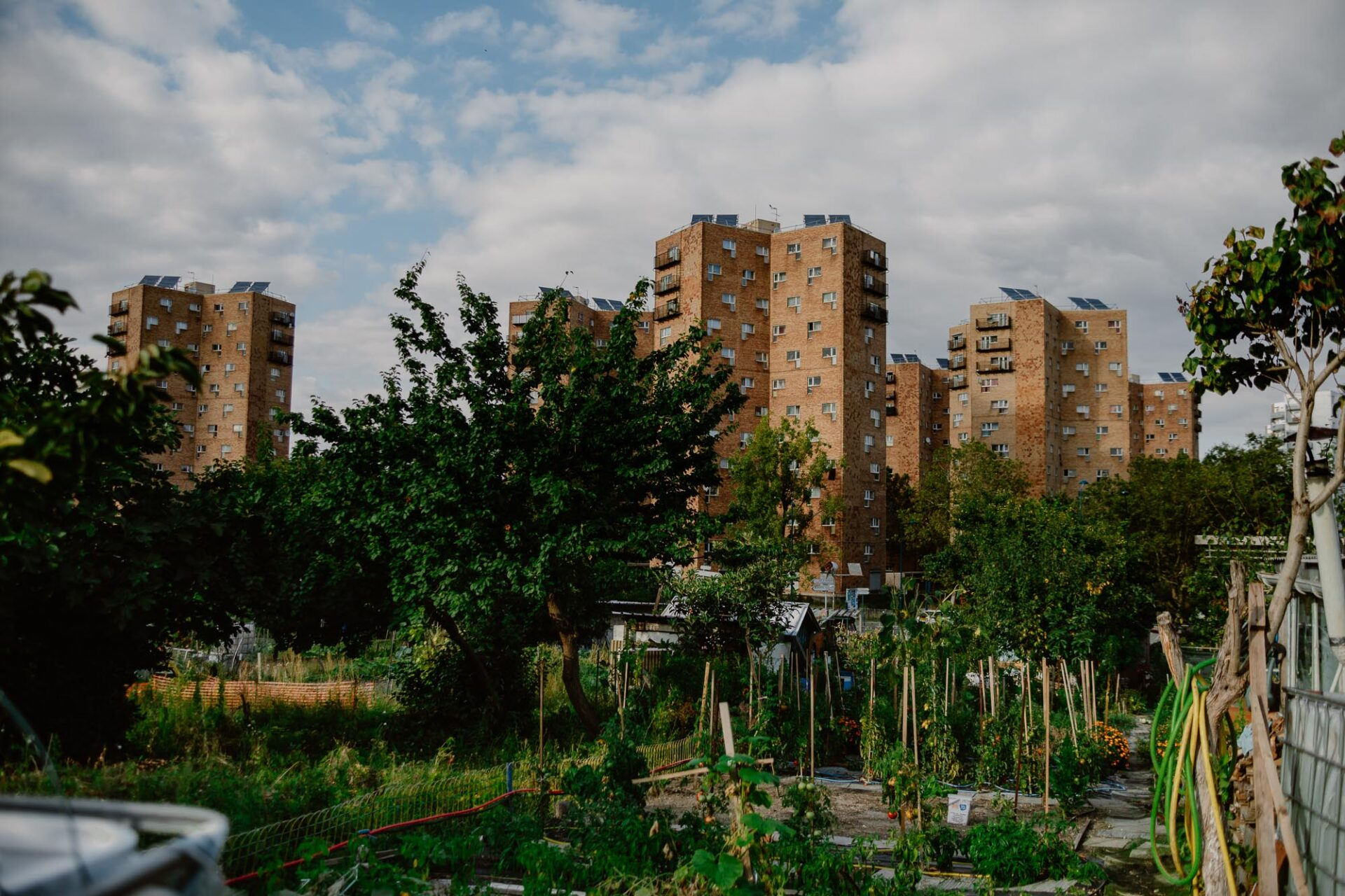 Jardins ouvriers aubervilliers 9 - Dagmara Bojenko - Eco-conscious Weddings, Births & Families